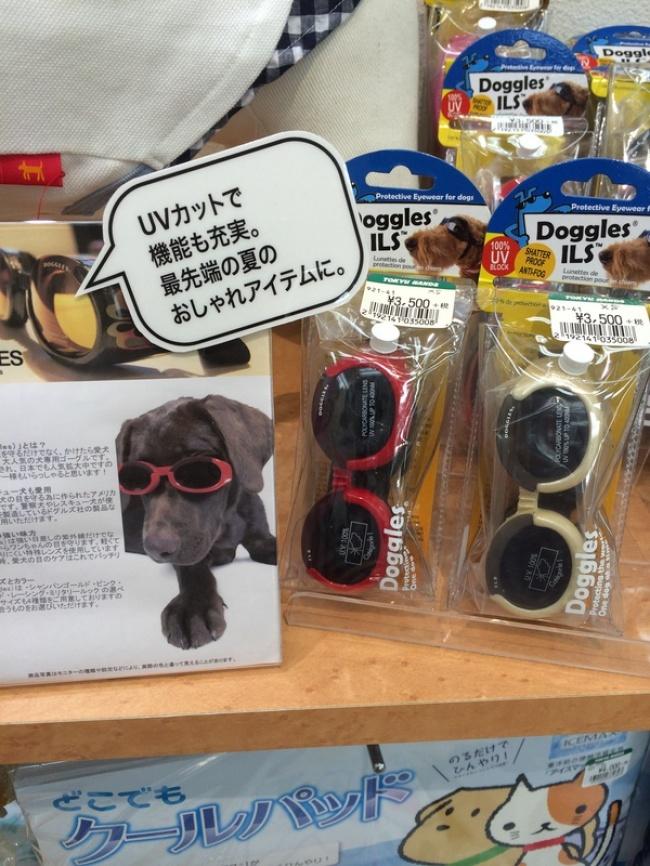 Okulary przeciwsłoneczne dla psów