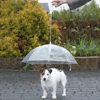 14 parasoli, których nie zobaczysz na ulicy. Zapewniają nie tylko ochronę przed deszczem
