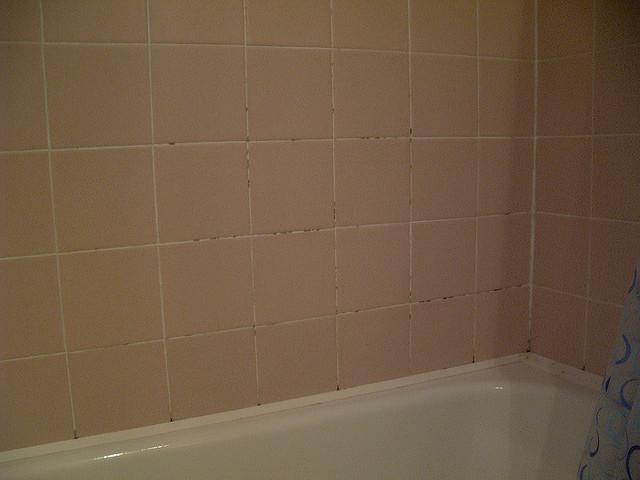 Niezbędny środek do czyszczenia łazienki