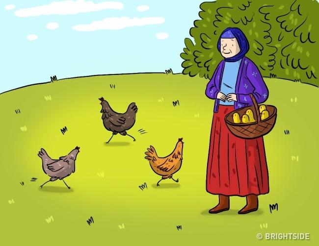 Kury i jaja