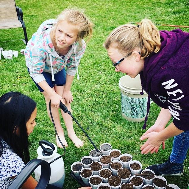 ziemia okrzemkowa - zabawa w ogrodzie