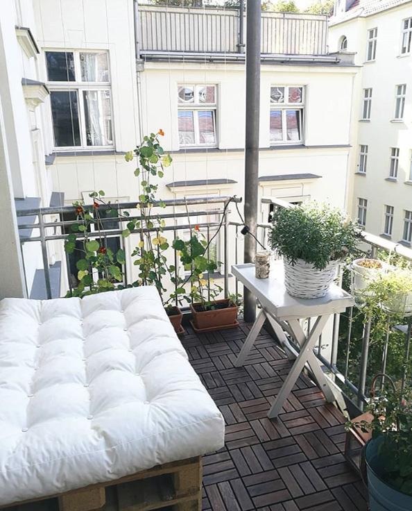 zieleń na balkonie