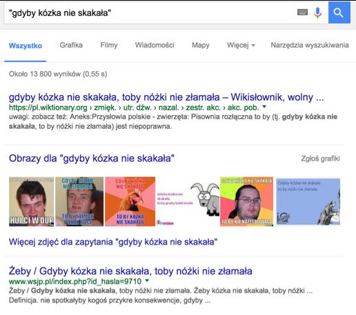 wyszukiwanie w google 9