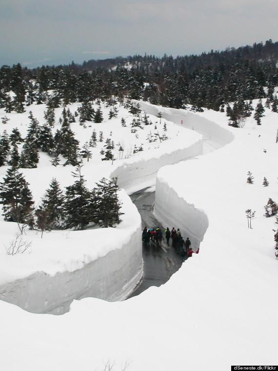 13 zabawnych zdjęć ukazujących uroki mroźnej zimy