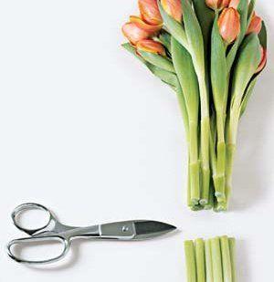 7 domowych sposobów, by cięte kwiaty stały dłużej. Nawet o tydzień!