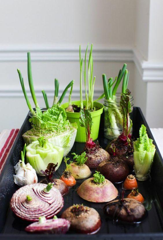 warzywa z warzyw