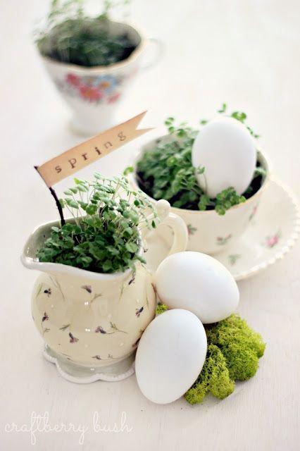 Prosty sposób na świąteczne jajko z rzeżuchy. Ostatni moment, by mieć ją na wielkanocnym stole
