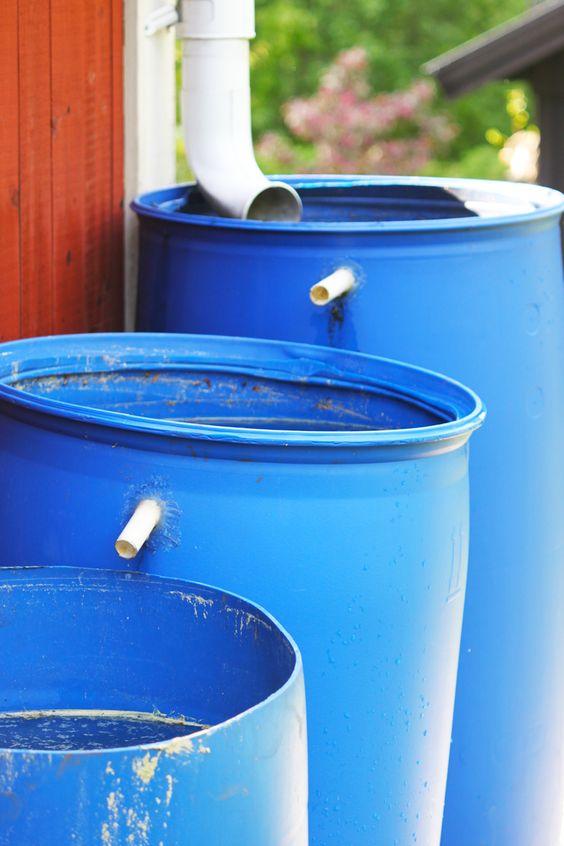 Jak zbierać wodę opadową i wykorzystać ją w ogrodzie?