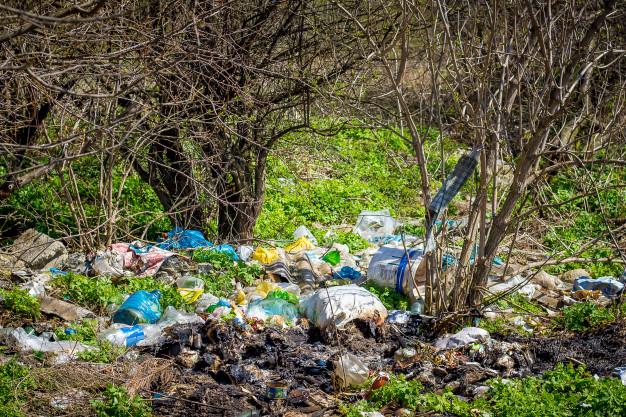 savoir-vivre-grzybiarza - śmieci w lesie