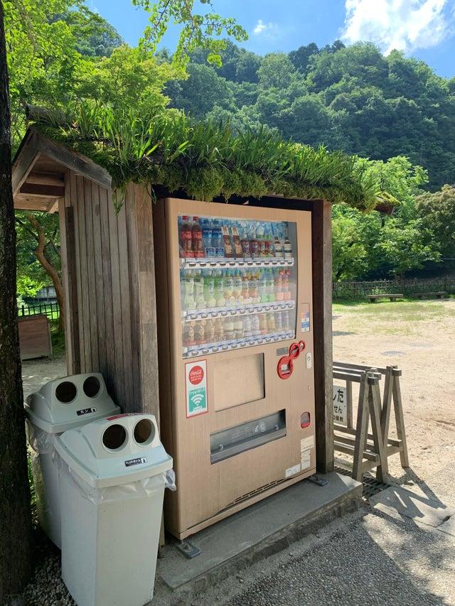 automat w japonii