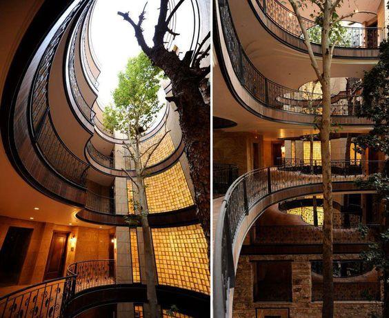 drzewo w budynku
