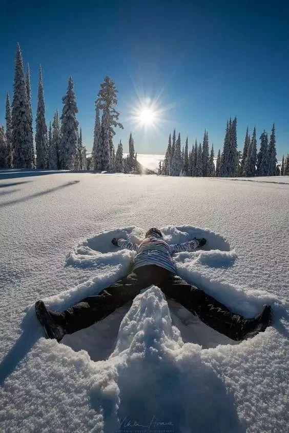 orzełek na śniegu